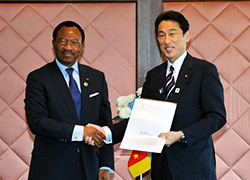 Meeting between Japanese Foreign Minister and Cameroon Minister of Economy, Planning and Regional Development