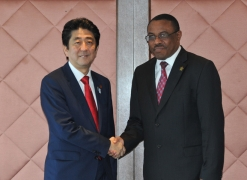Japan-Ethiopia Summit Meeting