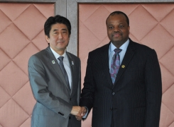 Japan-Swaziland Summit Meeting