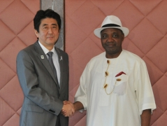 Meeting between Prime Minister Abe and H.E. Arc. Mohammed Namadi Sambo, Vice President of the Federal Republic of Nigeria