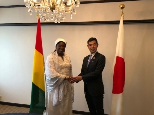 Meeting between Parliamentary Vice-Minister Tsuji and Minister of Cooperation and African Integration of the Republic of Guinea