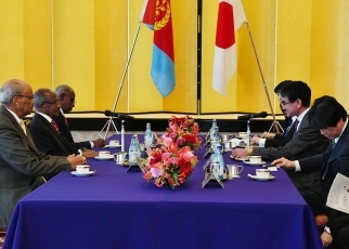 Japan-Eritrea Foreign Ministers' Meeting and Working Lunch 3