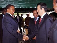 Tanzanian President Kikwete and Japanese Foreign Minister Okada
