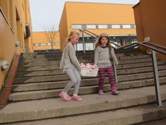 外務省: 世界の学校を見てみよう...