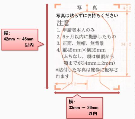 印刷された申請書/届出の縦横サイズ目安の画像1